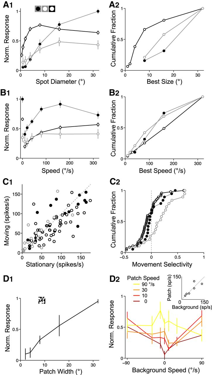 Active Dendritic Properties And Local Inhibitory Input Enable Flashing Led Circuit P Marian Flashers Download Figure