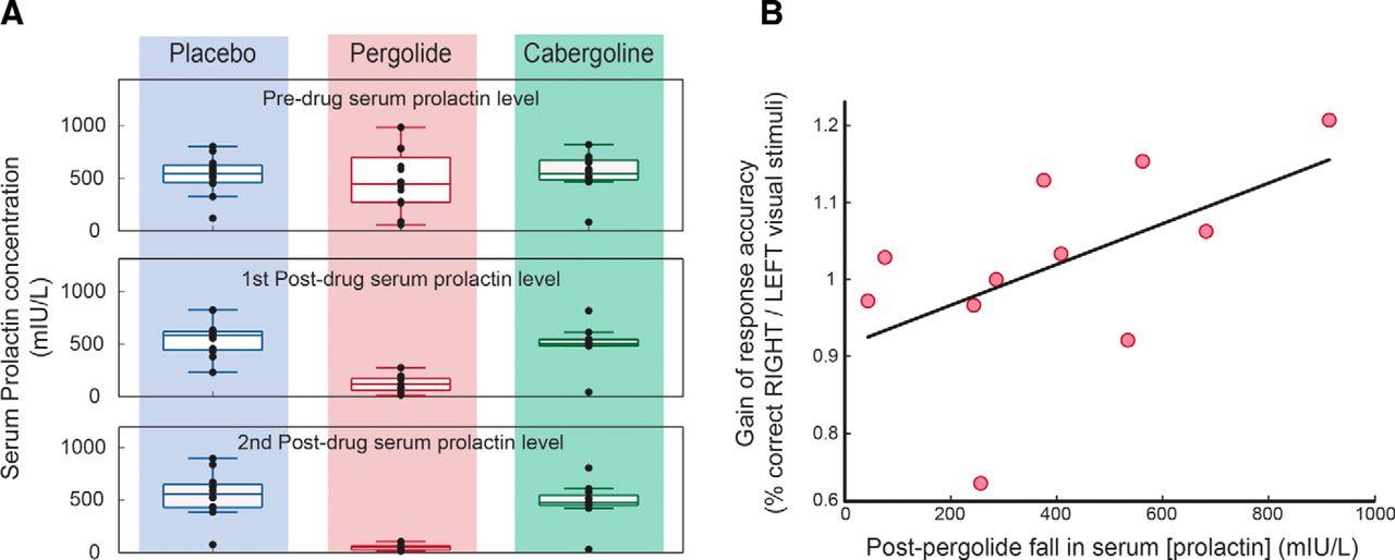 Dopamine Activation Preserves Visual Motion Perception Despite Noise