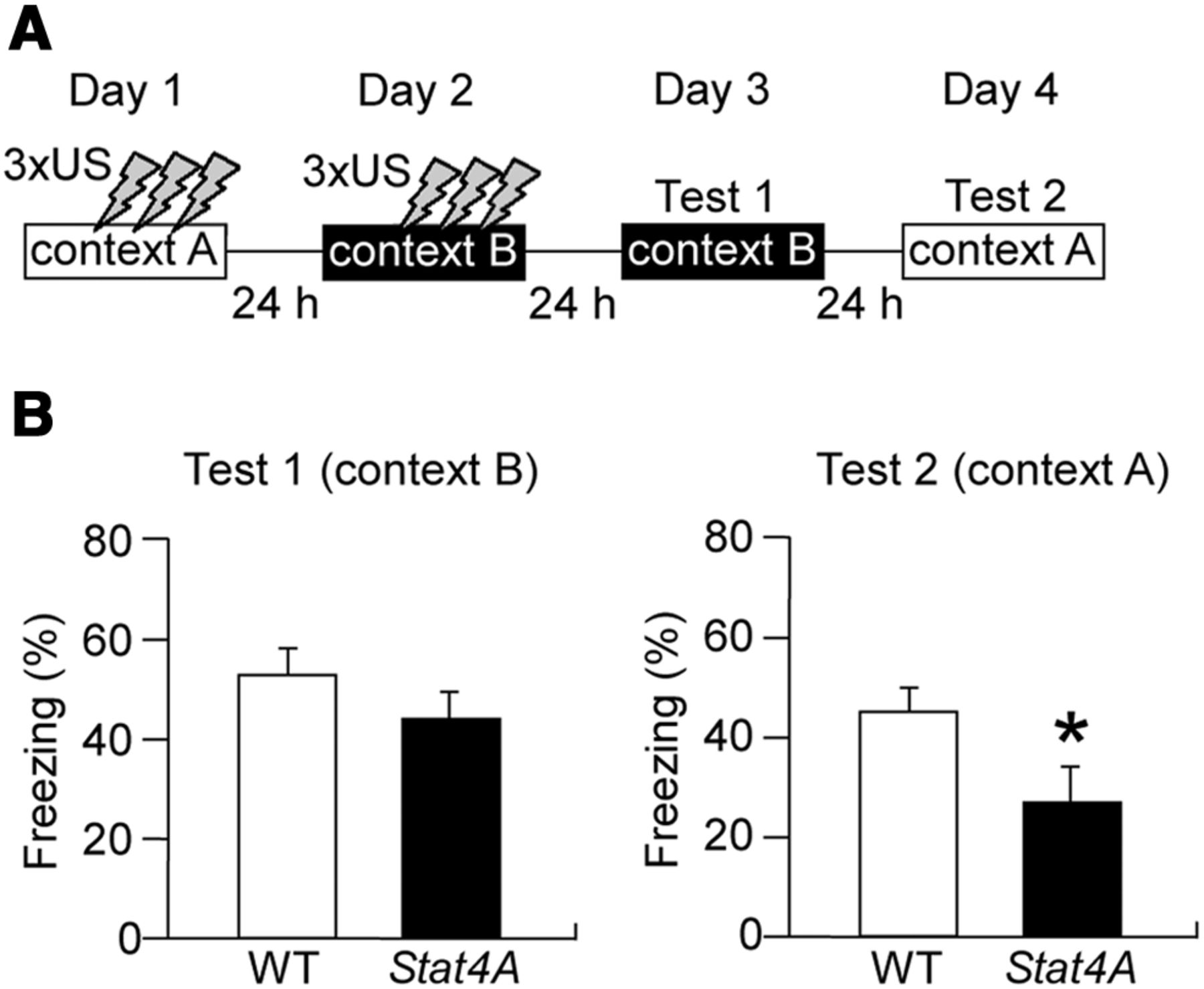 Genetic Demonstration Of A Role For Stathmin In Adult Hippocampal Remote Control Relay To Dc Motor Forward And Reverse Namely Download Figure