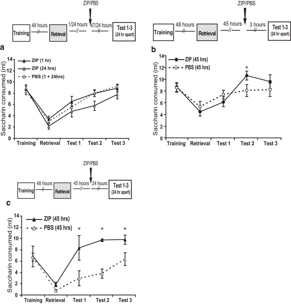 Memory Retrieval Has a Dynamic Influence on the Maintenance