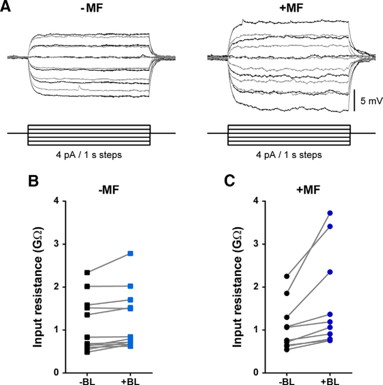 Magnetic Fields Modulate Blue Light Dependent Regulation Of Neuronal Molecular Expressions Electricity And Magnetism Resistance Download Figure
