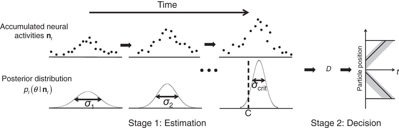 A Two-Stage Process Model of Sensory Discrimination: An