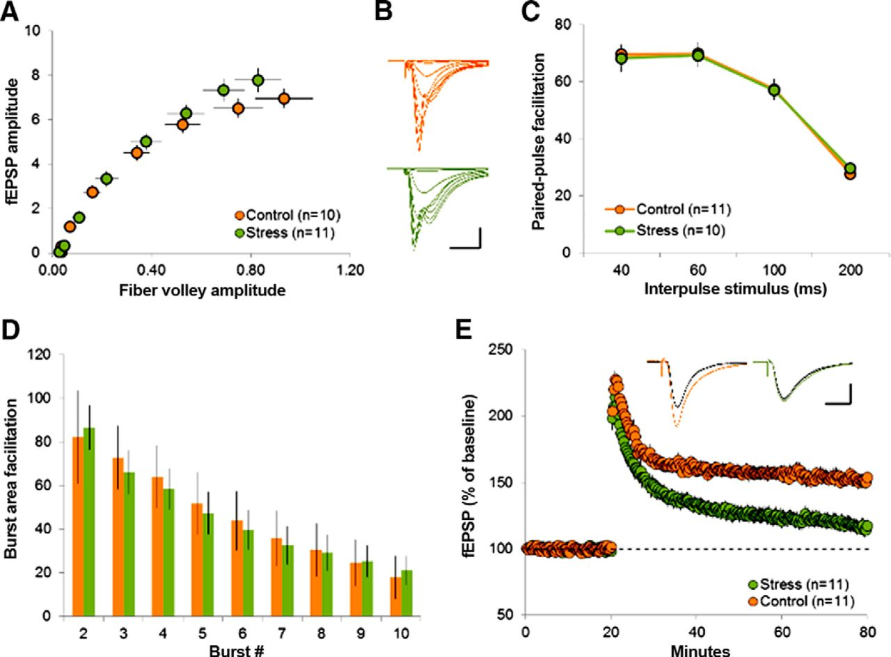 Converging, Synergistic Actions of Multiple Stress Hormones Mediate ...