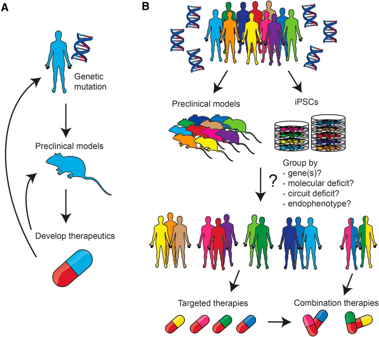 Autism Risk Genes Also Linked To Higher >> Current Perspectives In Autism Spectrum Disorder From Genes To