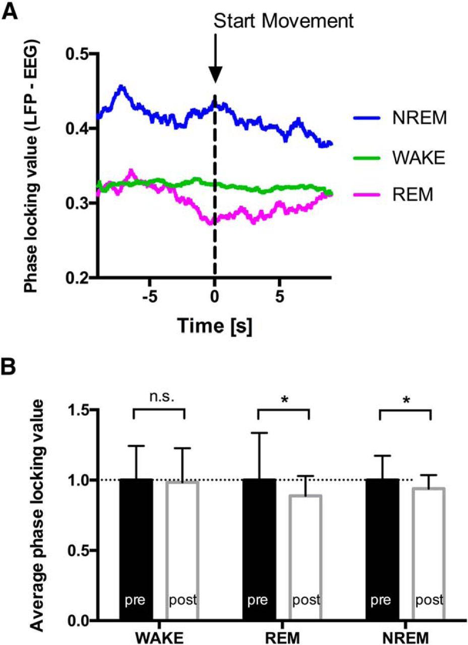 Electrophysiological Evidence For Alternative Motor Networks In Rem Electro Freeze Wiring Diagram Download Figure