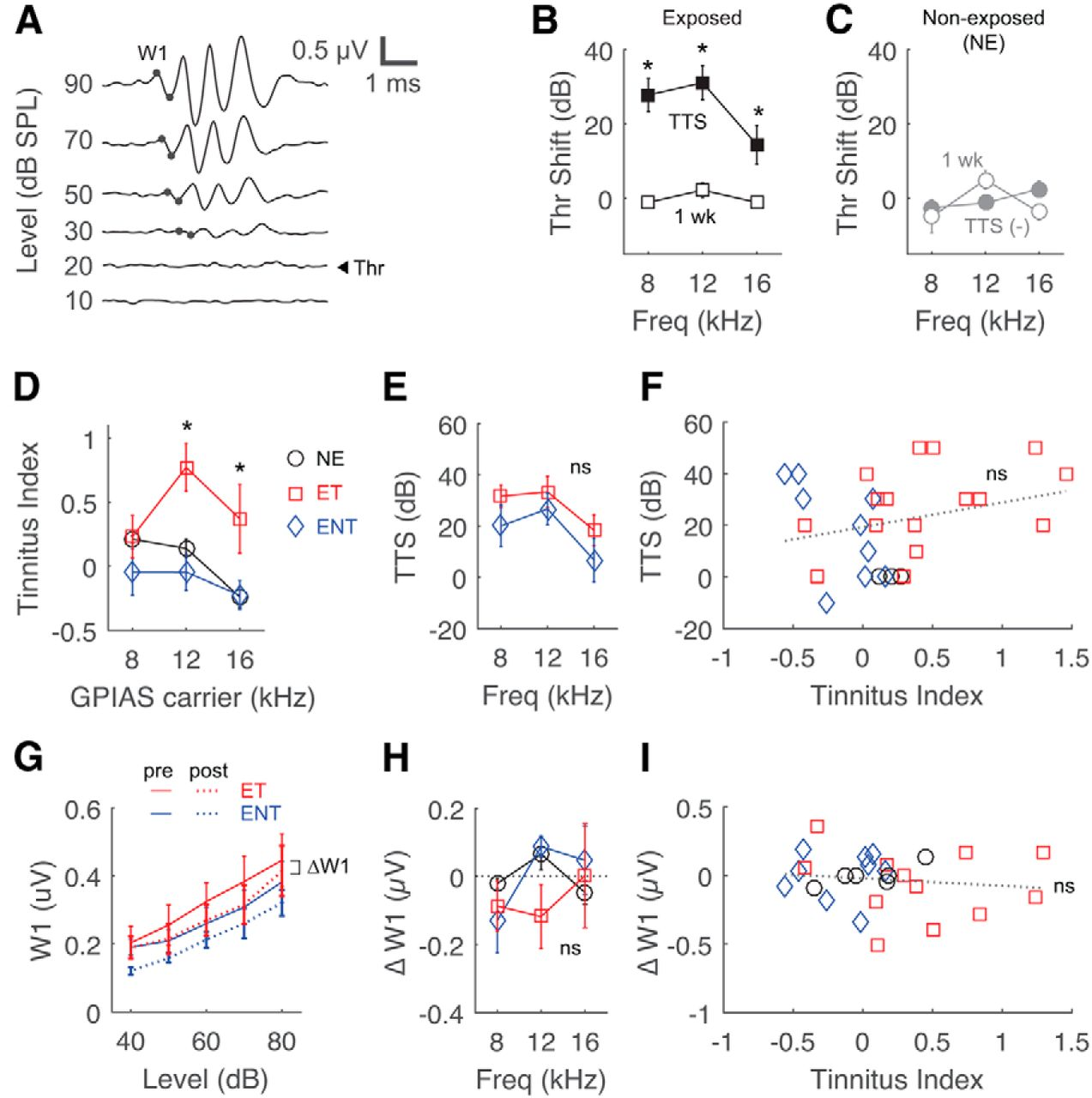 Increased Synchrony and Bursting of Dorsal Cochlear Nucleus