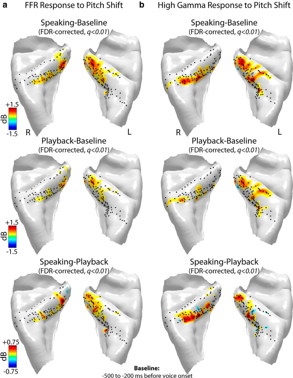 Neural Correlates of Vocal Production and Motor Control in Human ...