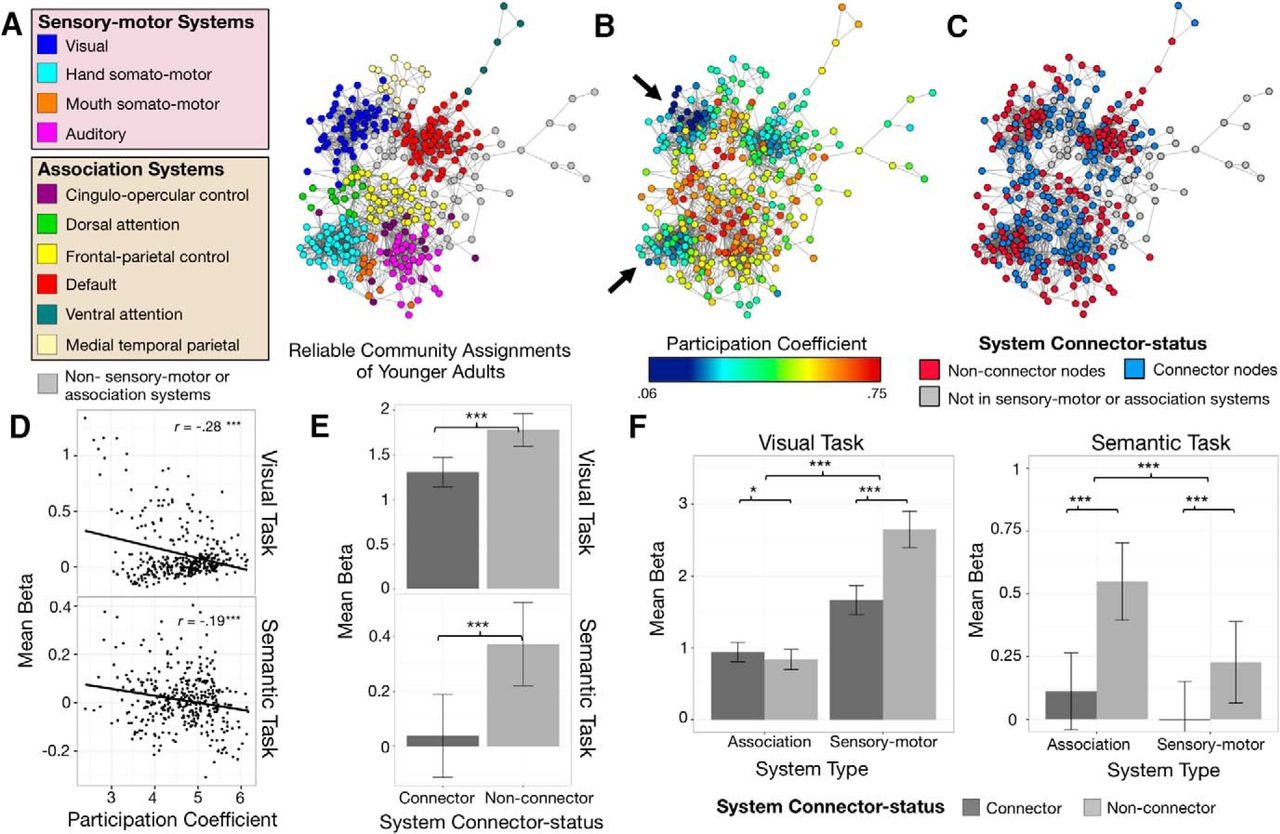 Resting-State Network Topology Differentiates Task Signals