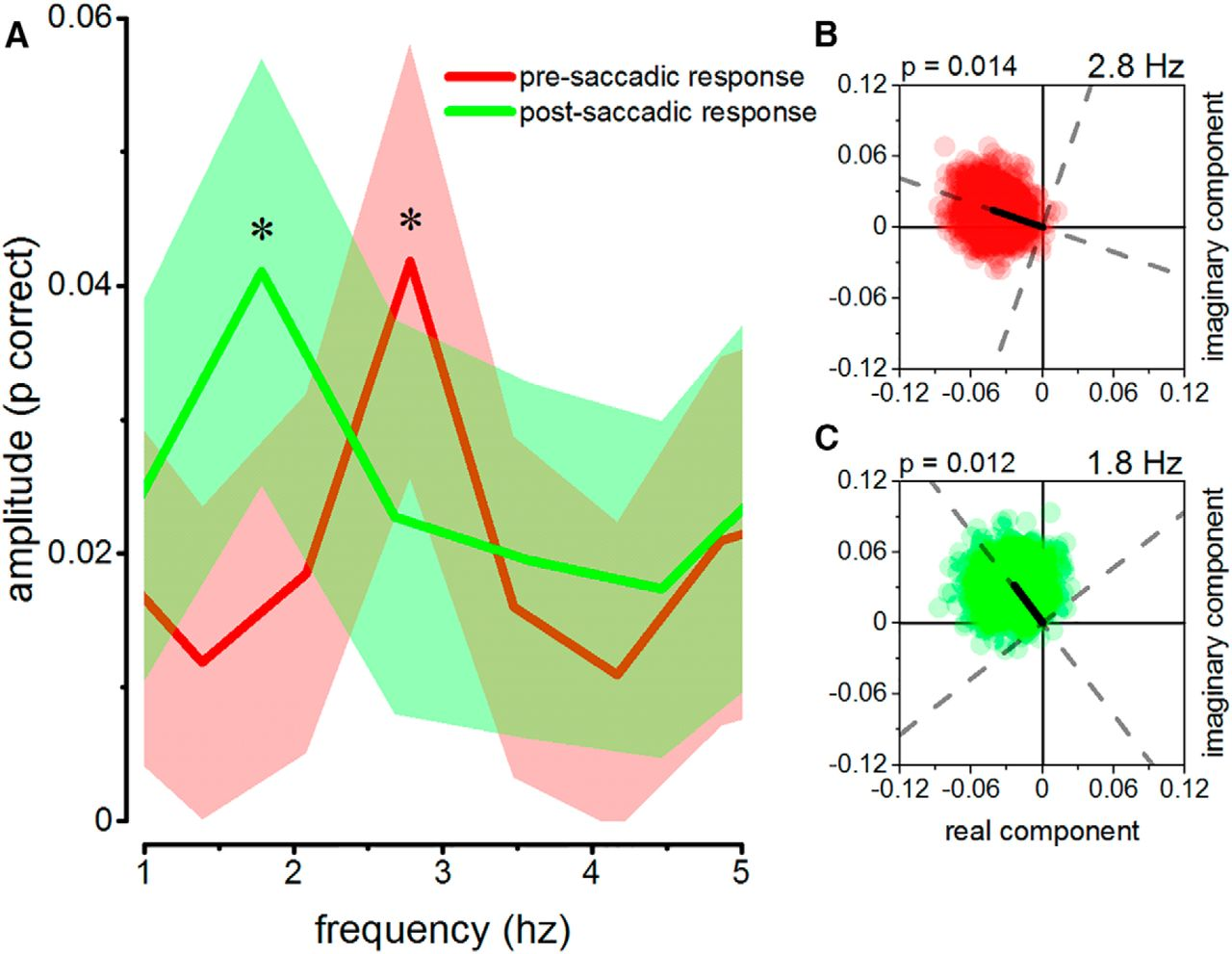 Saccadic Suppression Is Embedded Within Extended Oscillatory
