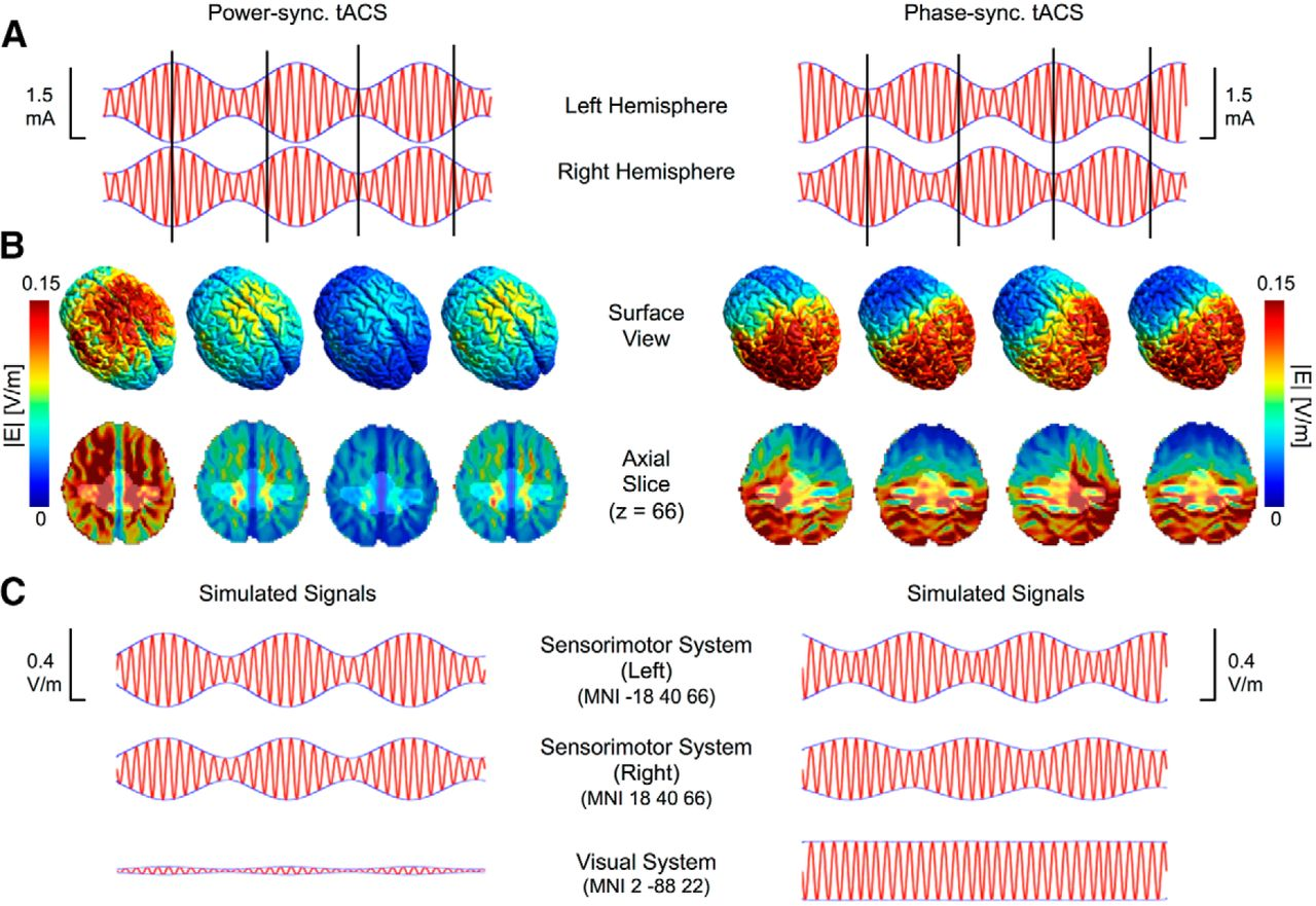 Concurrent tACS-fMRI Reveals Causal Influence of Power