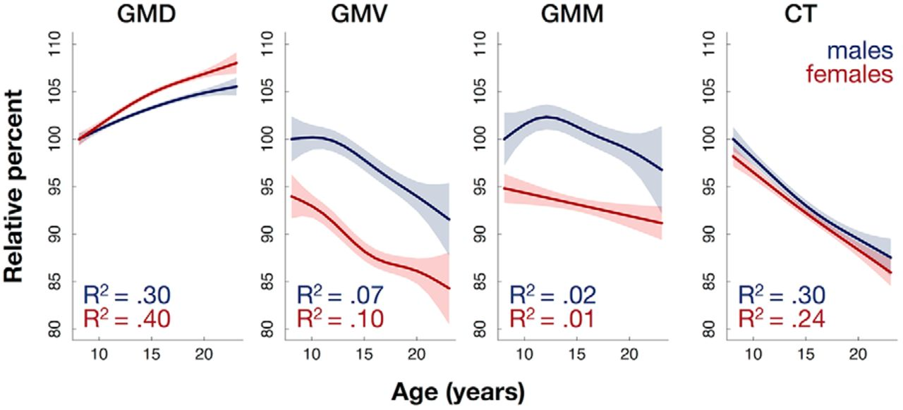 Gray Matter Density Increases During >> Age Related Effects And Sex Differences In Gray Matter Density