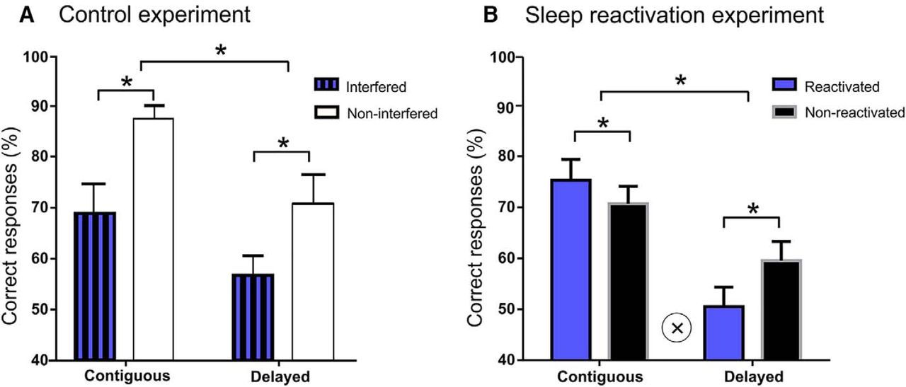 Targeted Memory Reactivation During Sleep Adaptively Promotes The