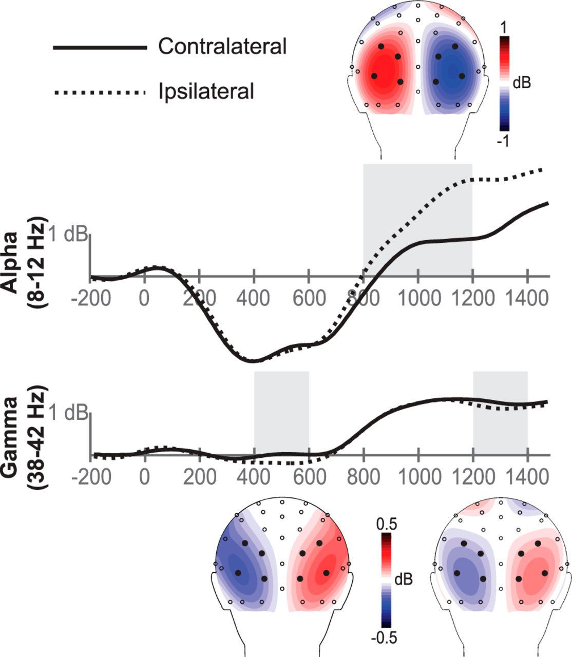 Cortical and Subcortical Coordination of Visual Spatial Attention
