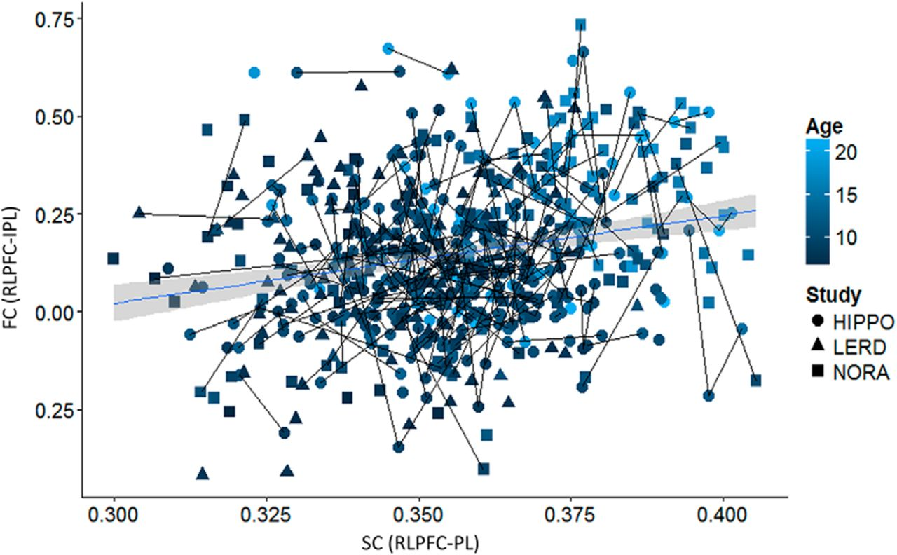 Frontoparietal Structural Connectivity in Childhood Predicts ...