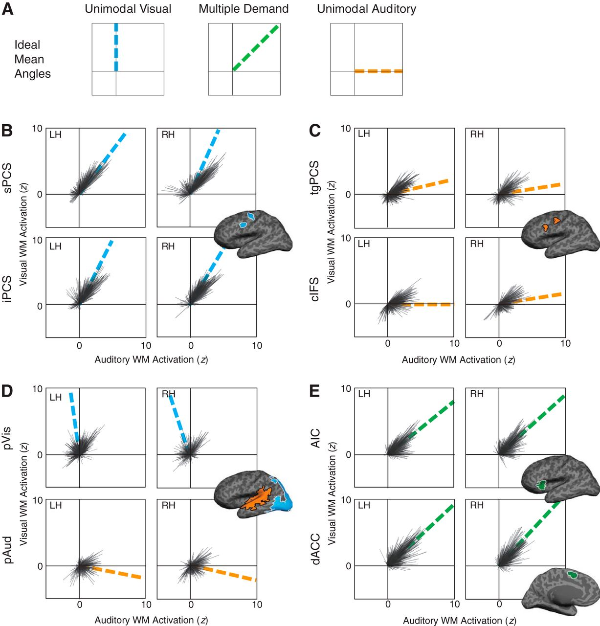 Sensory Biased And Multiple Demand Processing In Human Lateral