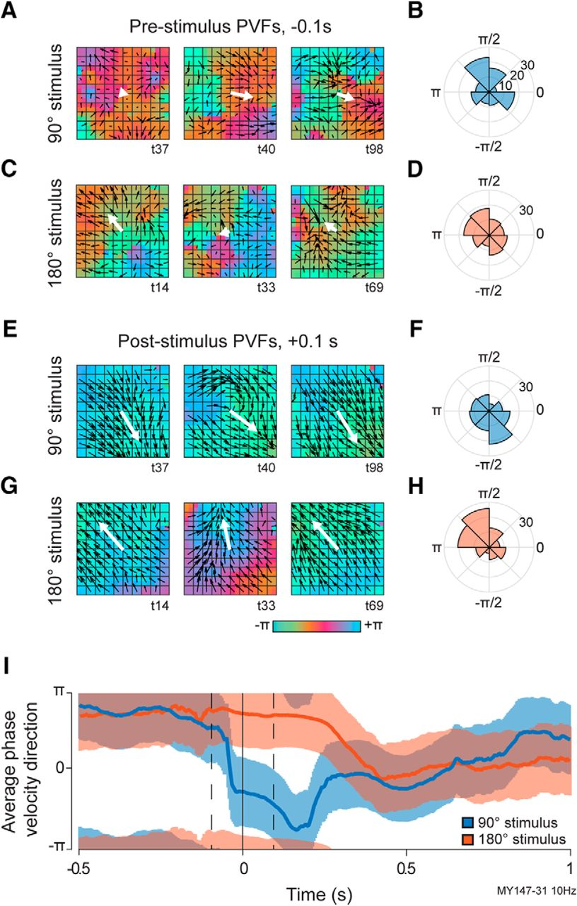 Visual Motion Discrimination by Propagating Patterns in Primate ...