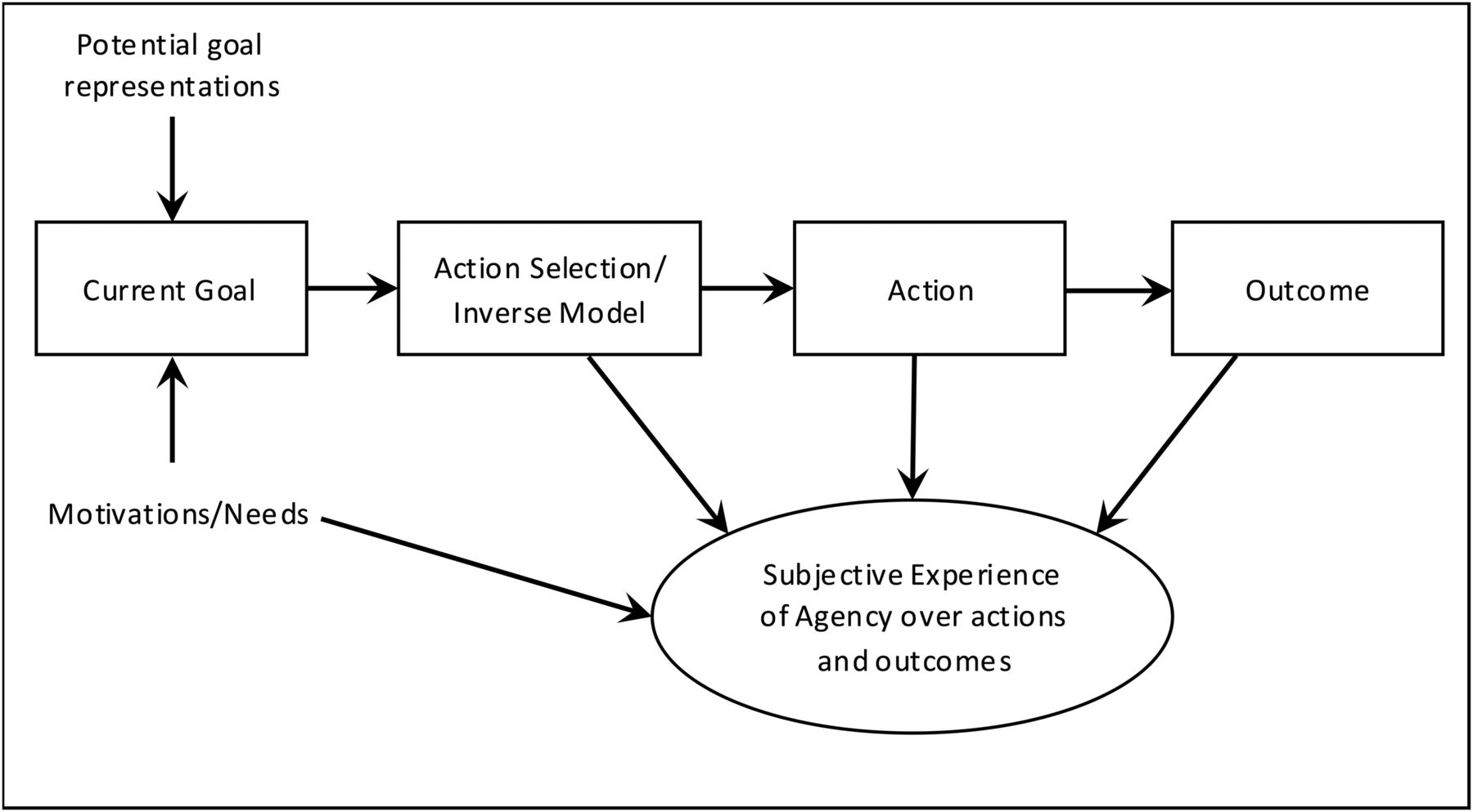 Volition And Action In The Human Brain Processes Pathologies And