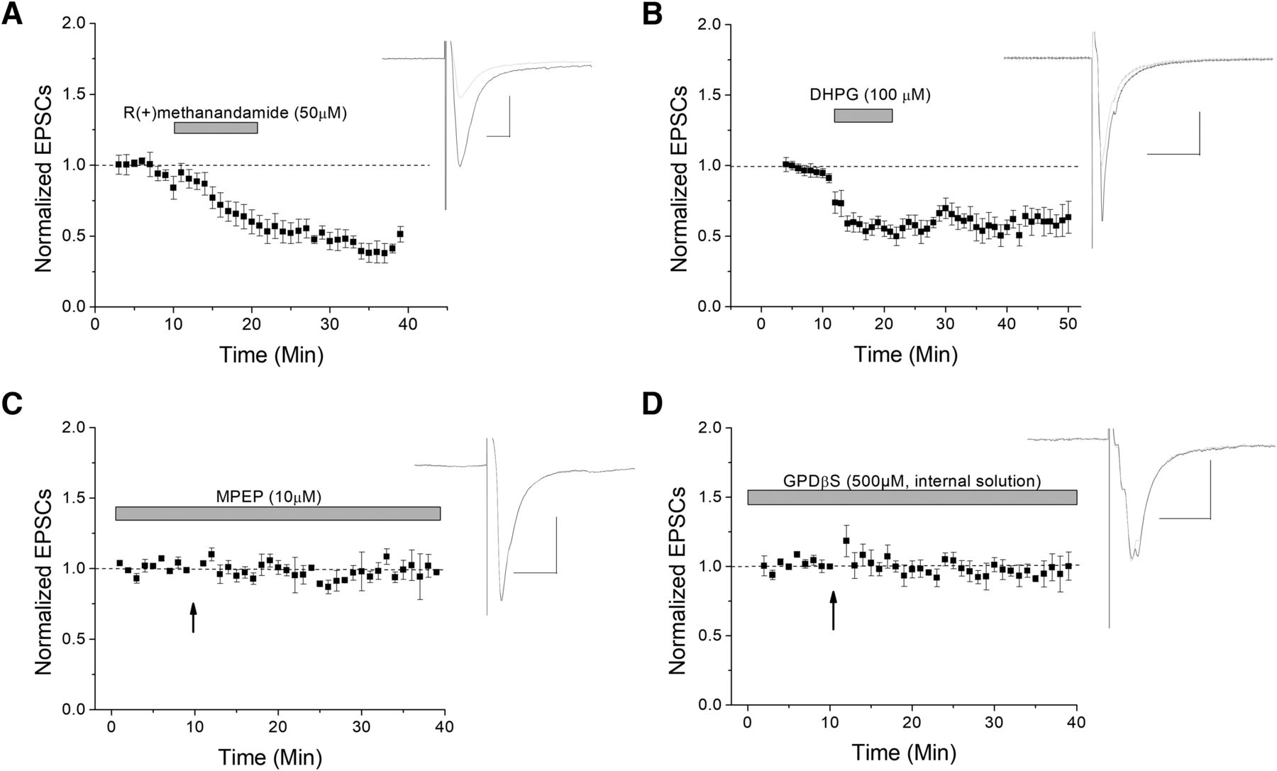 CB1-Dependent Long-Term Depression in Ventral Tegmental Area