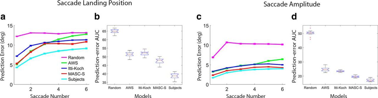 A Model of the Superior Colliculus Predicts Fixation