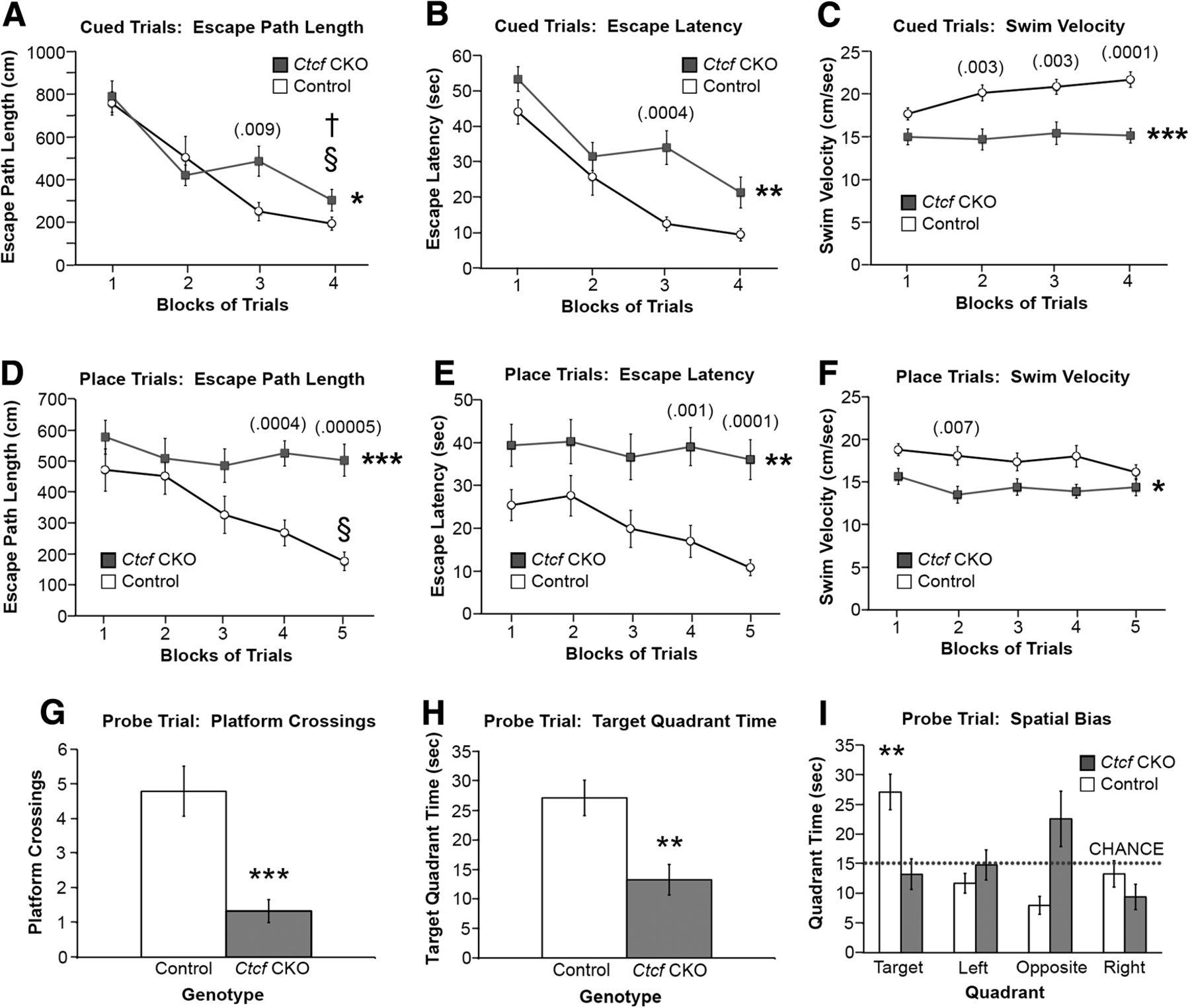 Abnormal Microglia And Enhanced Inflammation Related Gene