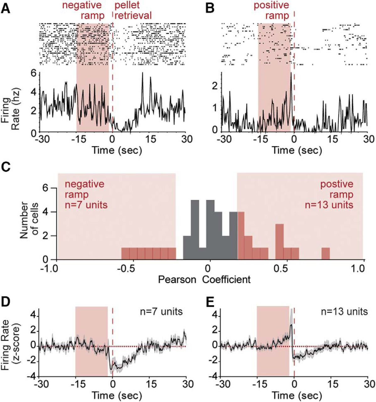 Coordinated Ramping of Dorsal Striatal Pathways preceding