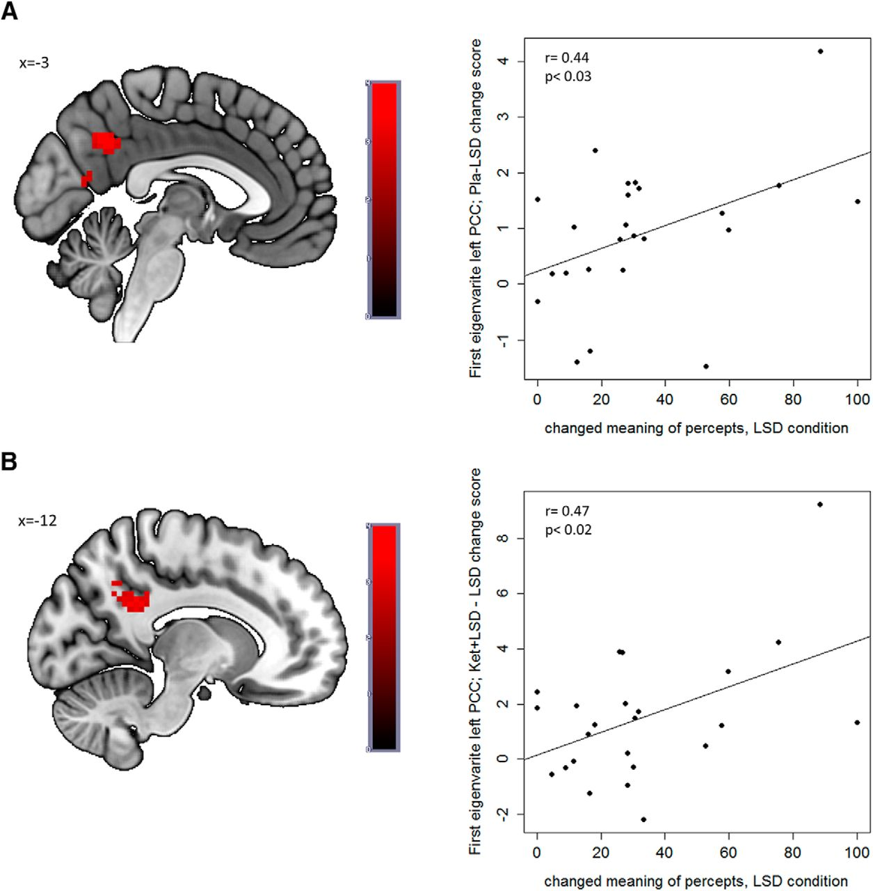 Role of the 5-HT2A Receptor in Self- and Other-Initiated Social
