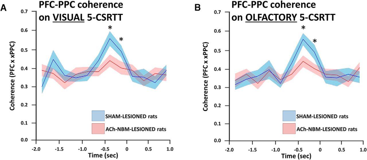 Cholinergic Modulation of Frontoparietal Cortical Network