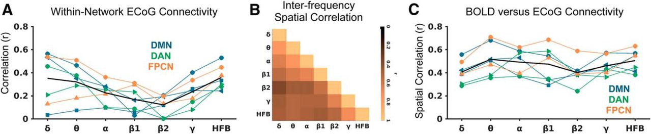 Intracranial Electrophysiology Reveals Reproducible