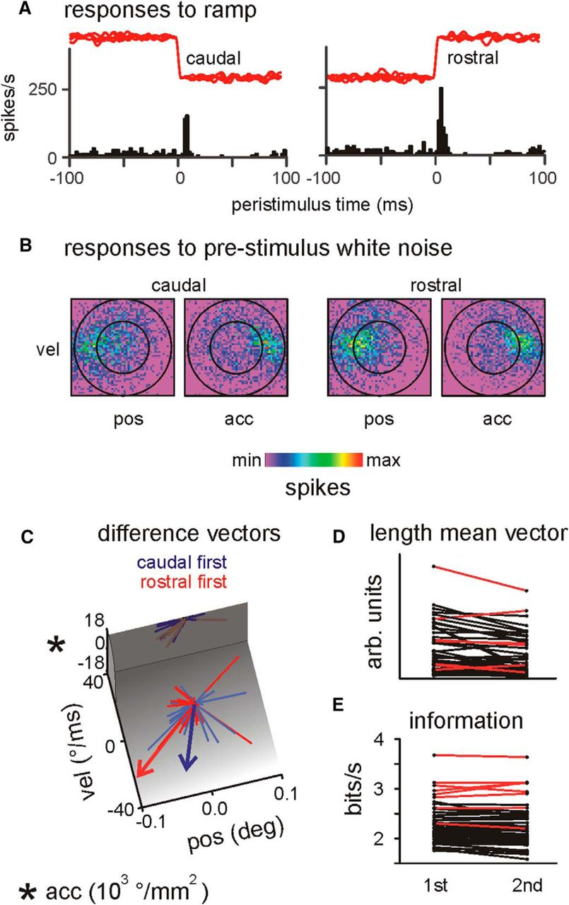 Primary Tactile Thalamus Spiking Reflects Cognitive Signals