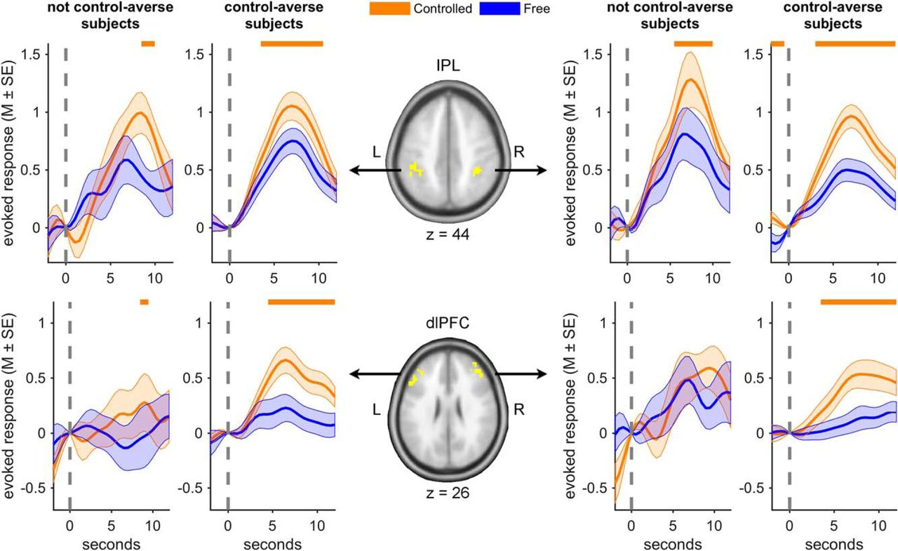 Neural Mechanisms Underlying Individual Differences in Control