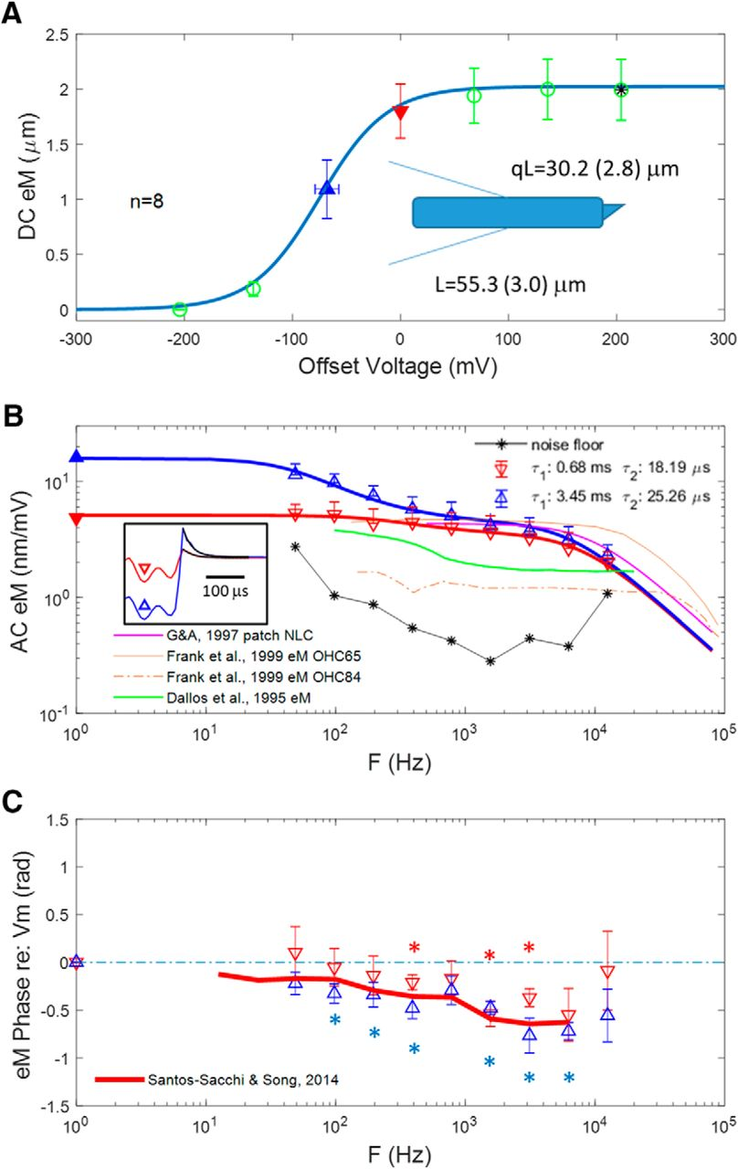 The Frequency Response Of Outer Hair Cell Voltage Dependent Motility Widebandtwopolehighpassfiltercircuitdiagramgif Download Figure