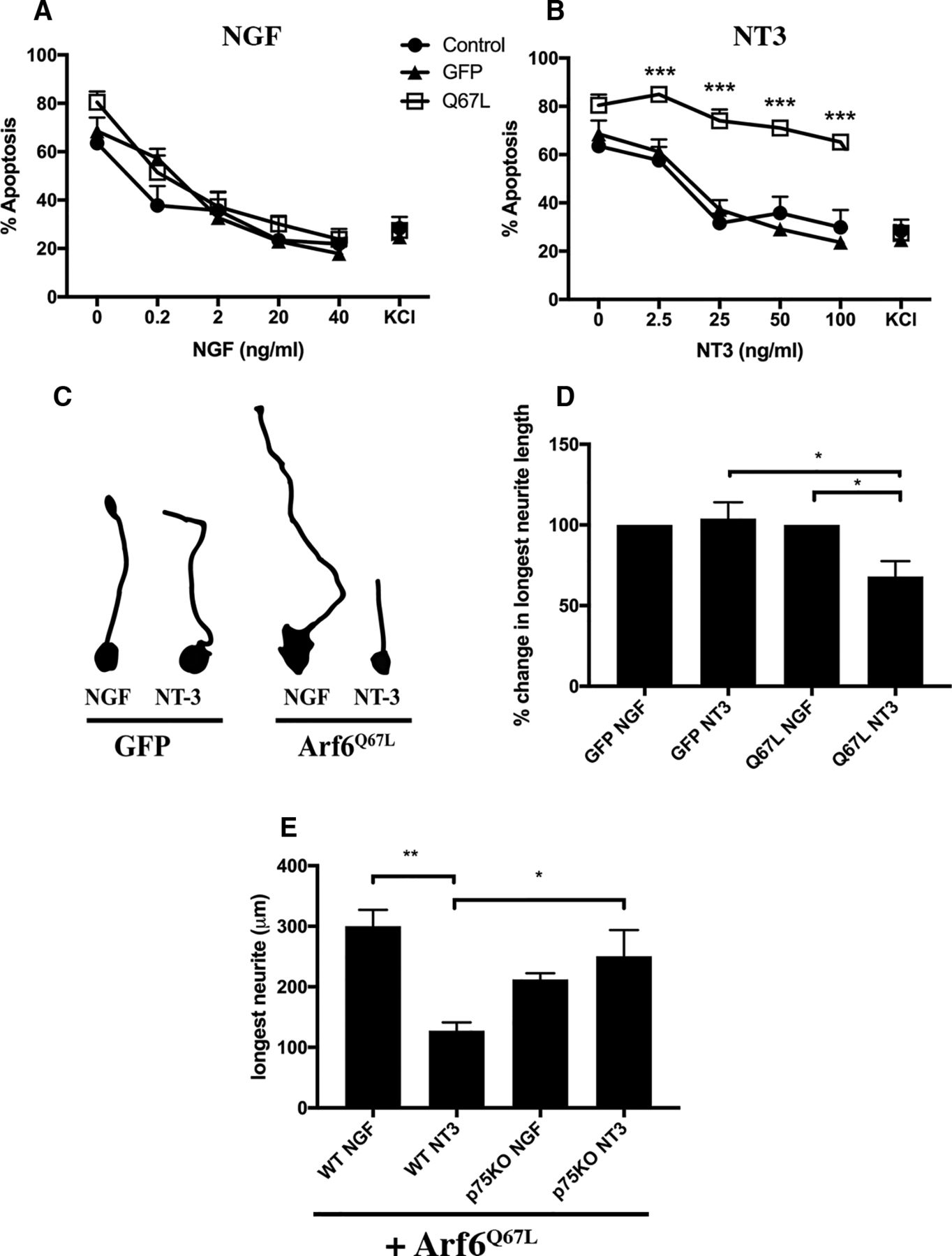 Neurotrophin Responsiveness Of Sympathetic Neurons Is Regulated By 2006 Pace Arrow Slide Out Wiring Diagram Download Figure