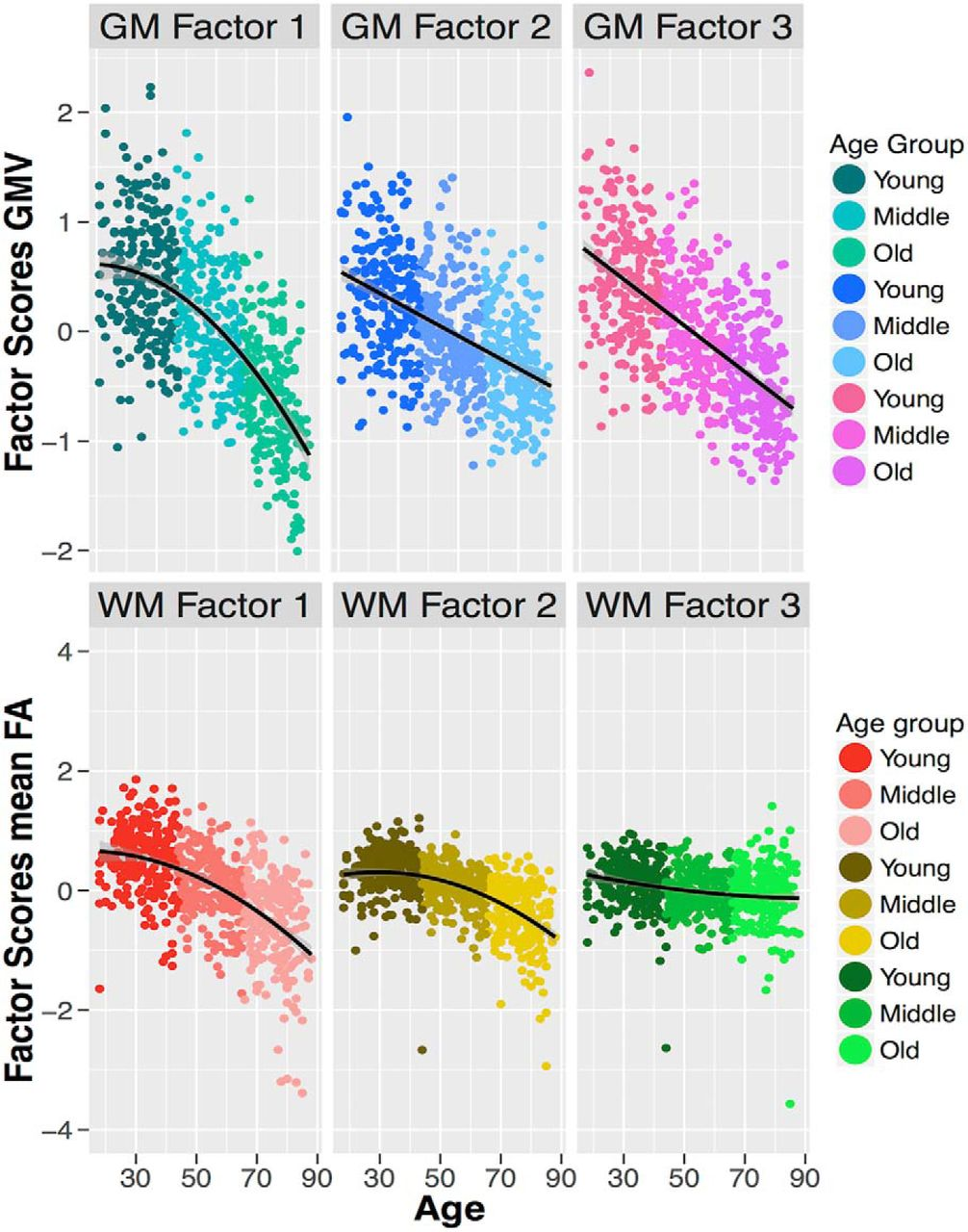 Age Differentiation within Gray Matter, White Matter, and between