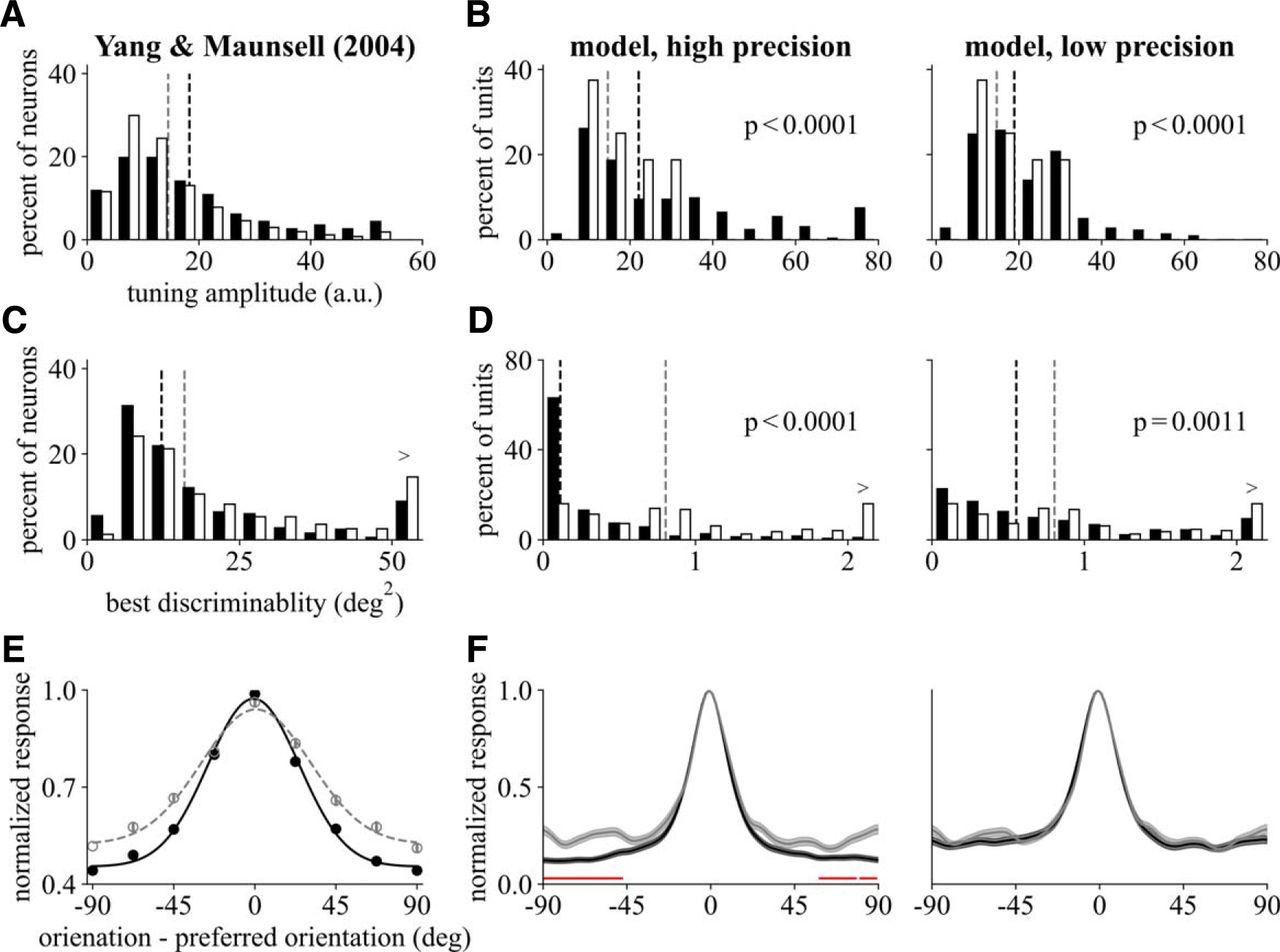 Deep Neural Networks for Modeling Visual Perceptual Learning