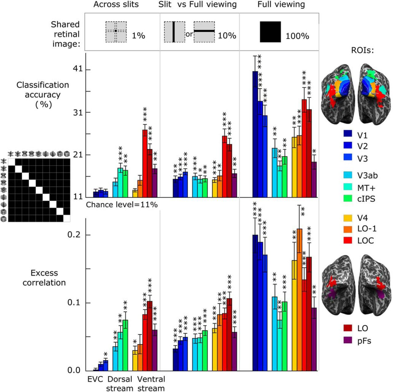 Object Representations in Human Visual Cortex Formed Through