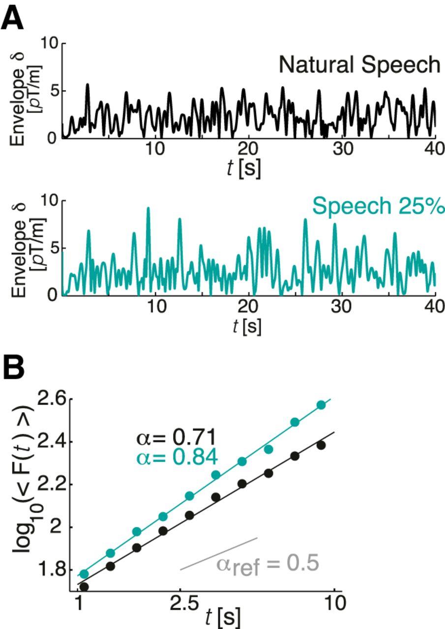 Scale-Free Amplitude Modulation of Neuronal Oscillations