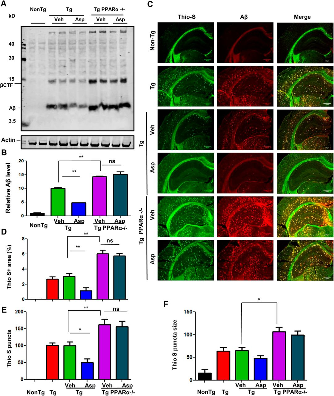 Aspirin Induces Lysosomal Biogenesis and Attenuates Amyloid Plaque