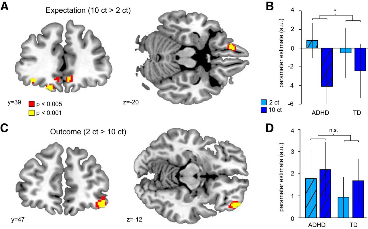Link Between Adhd Academic Expectations >> Orbitofrontal Signaling Of Future Reward Is Associated With