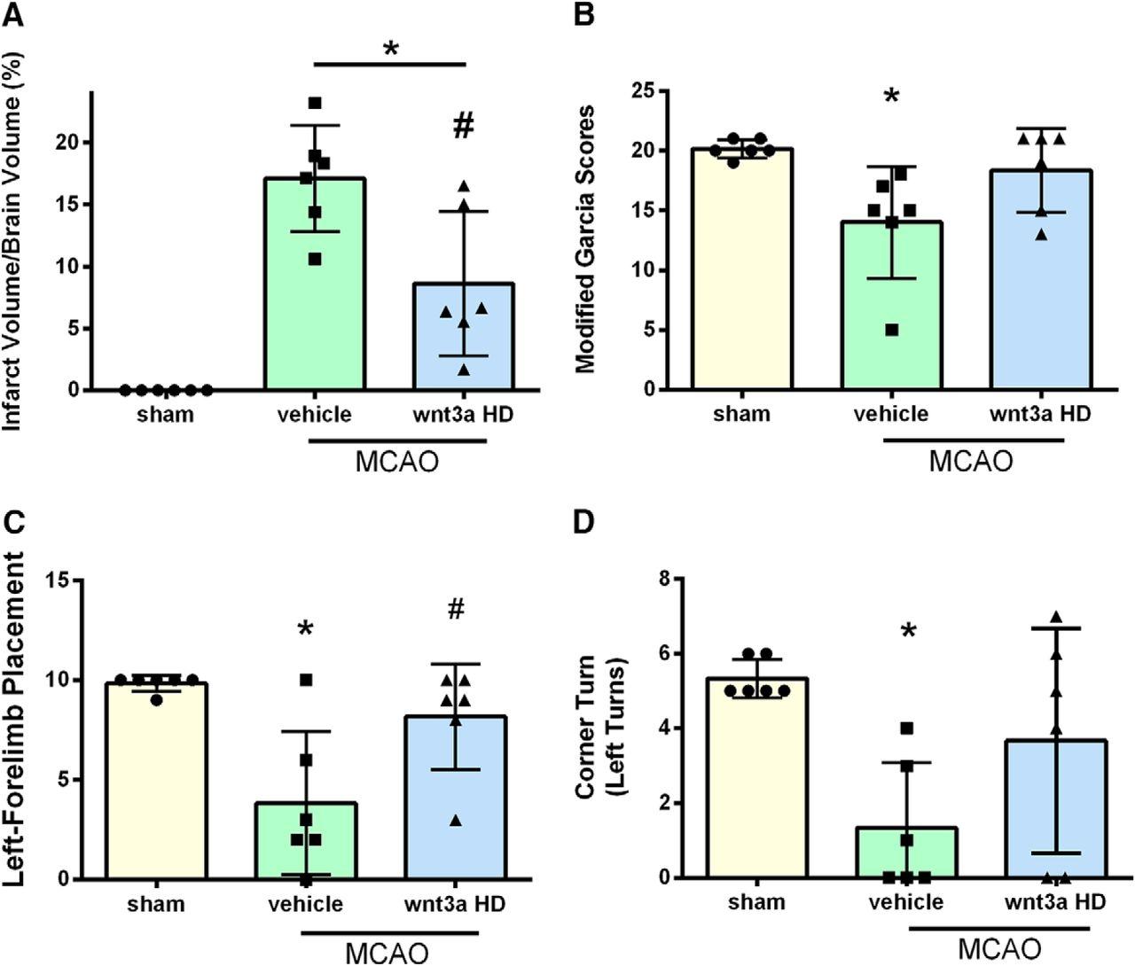 Intranasal wnt3a Attenuates Neuronal Apoptosis through Frz1