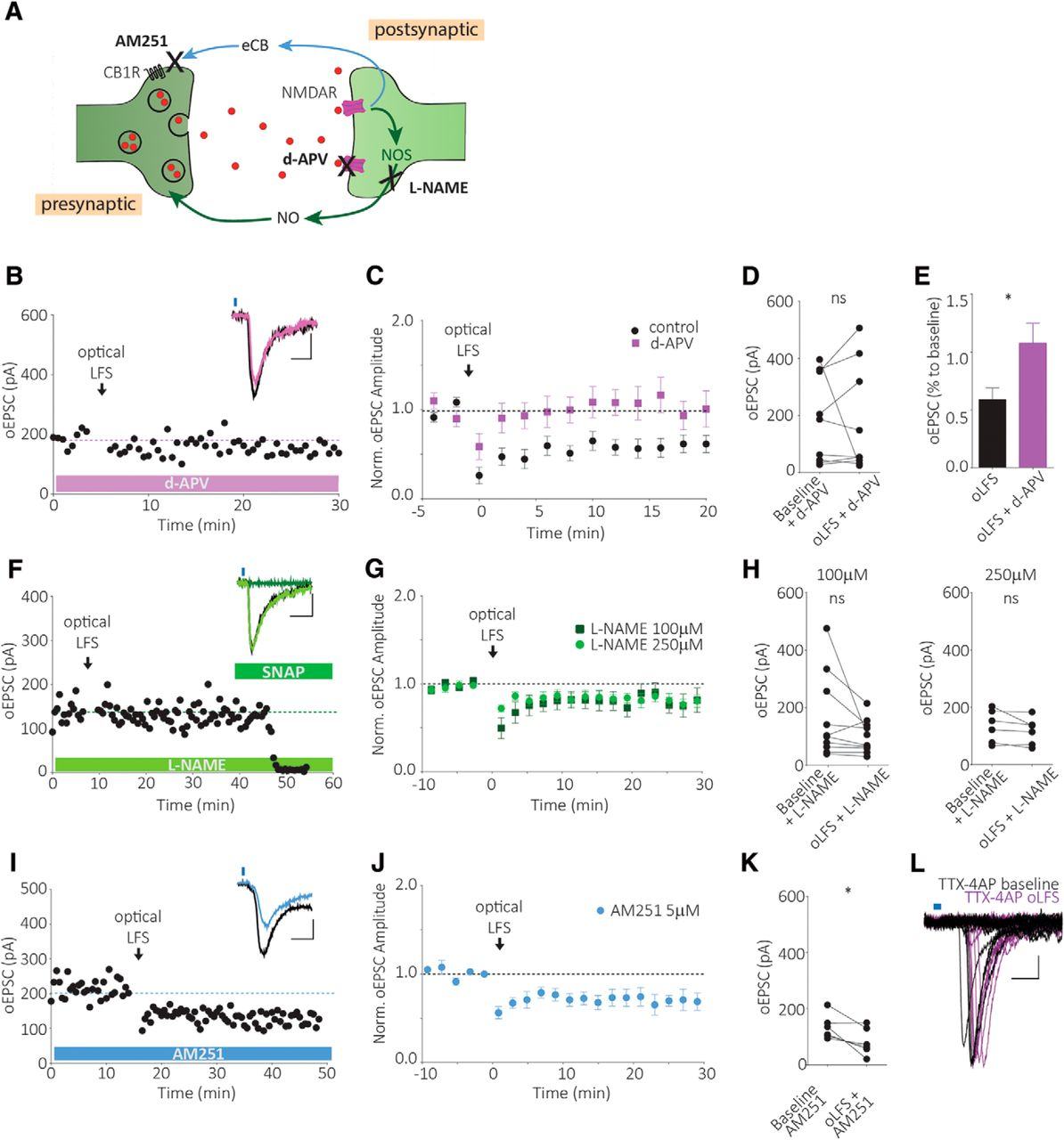 Long-Term Depression Induced by Optogenetically Driven