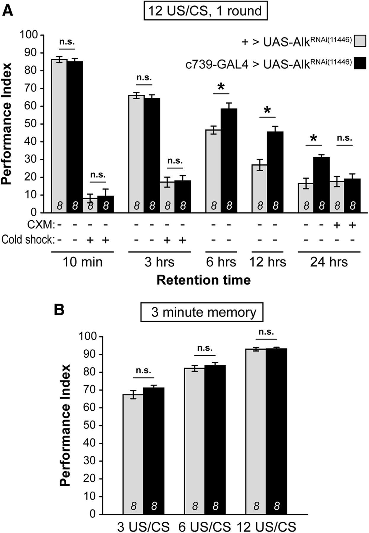 The Drosophila Receptor Tyrosine Kinase Alk Constrains Long