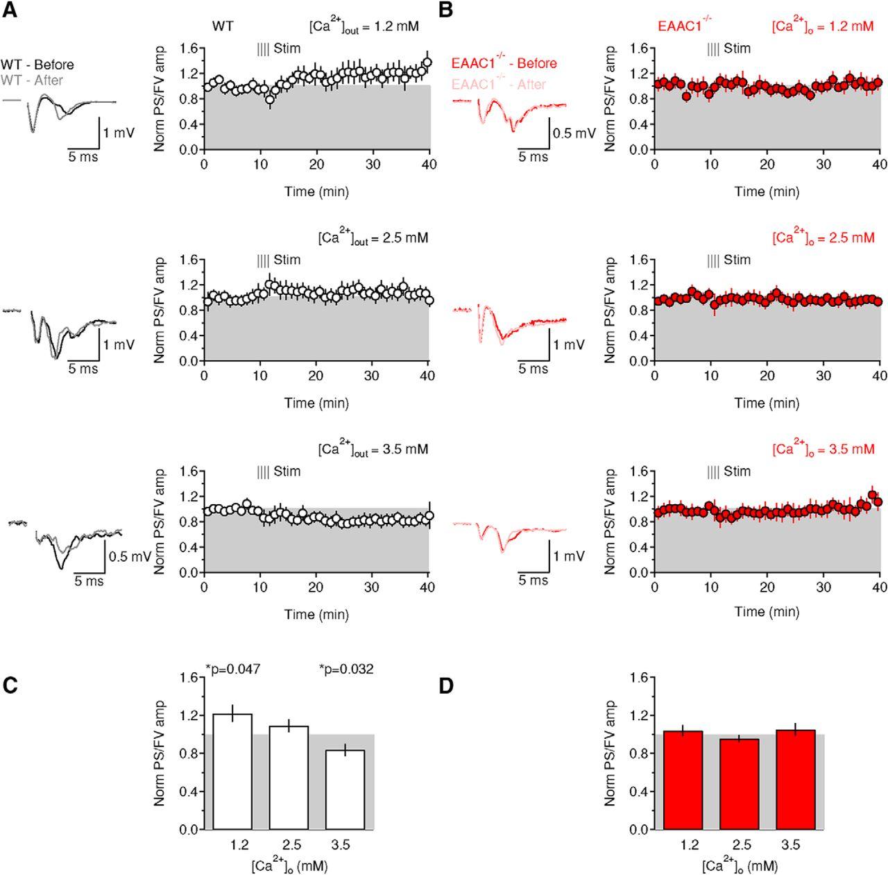 Neuronal Glutamate Transporters Control Dopaminergic Signaling And Bipolar Input Long Term Integrator Download Figure