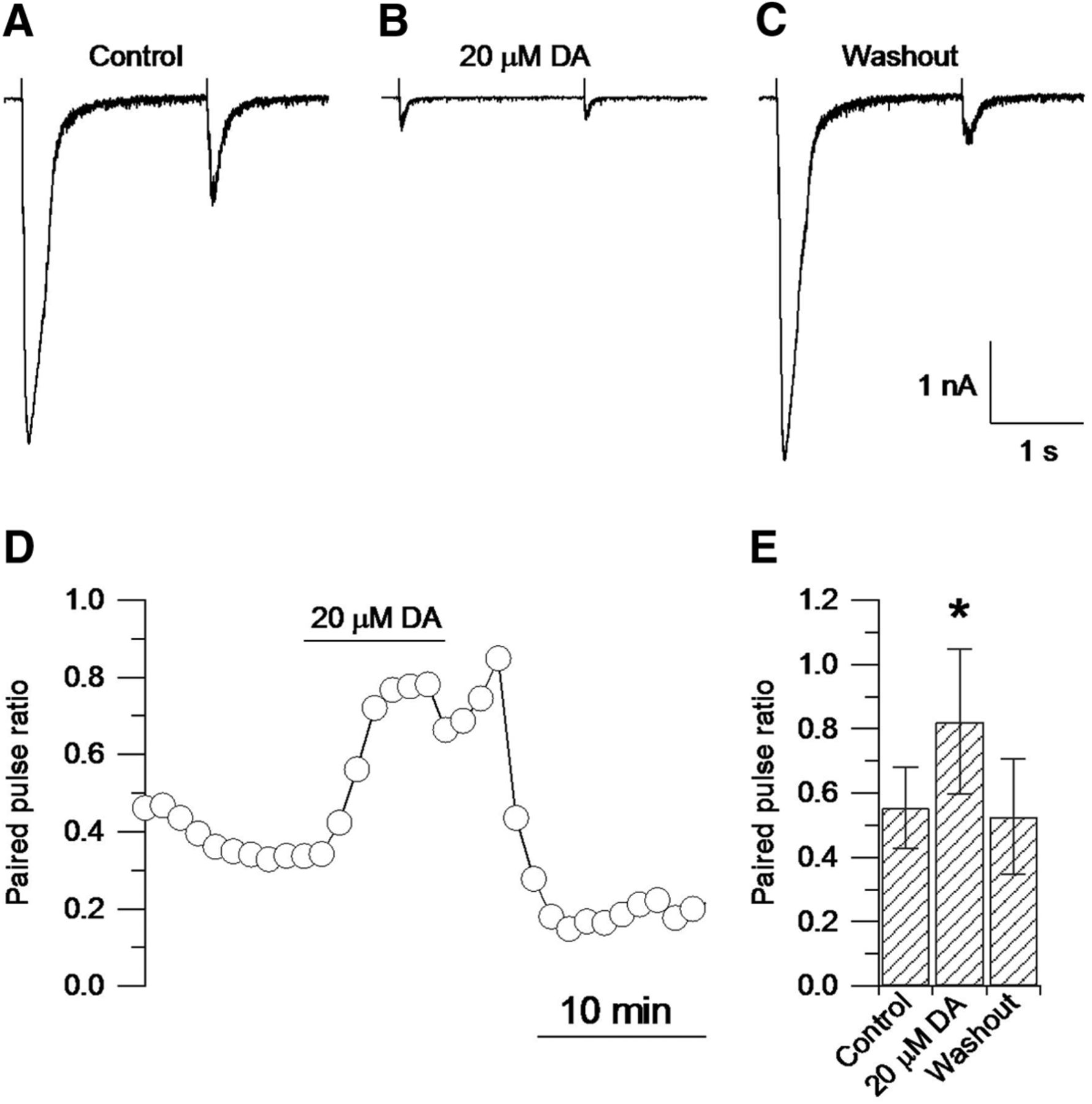 presynaptic inhibition and neural control