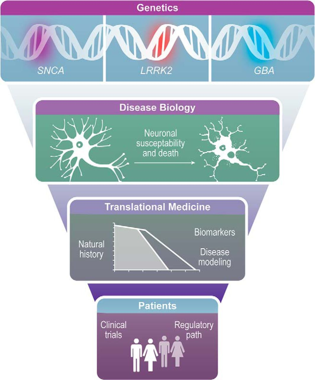 New Frontiers in Parkinson's Disease: From Genetics to the