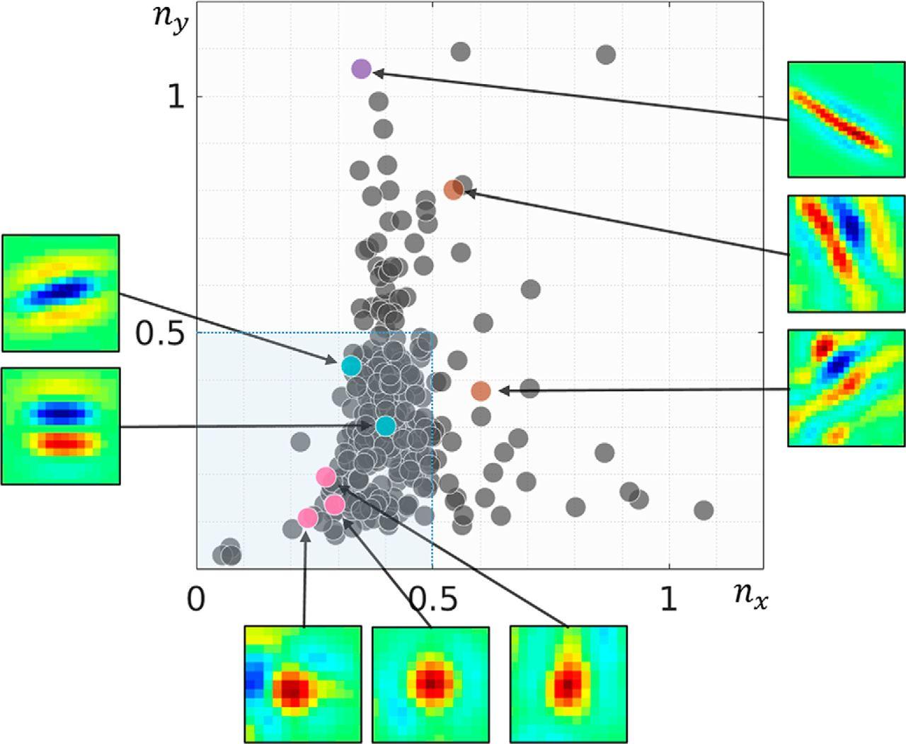 Emergence of Binocular Disparity Selectivity through Hebbian