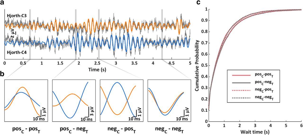 Phase Synchronicity of μ-Rhythm Determines Efficacy of
