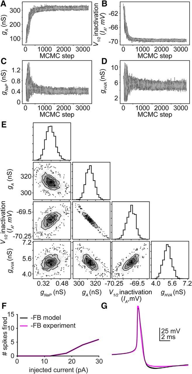 Gonadotropin Releasing Hormone Gnrh Neuron Excitability Is Bremis Switch Reversing Wiring Diagram Download Figure