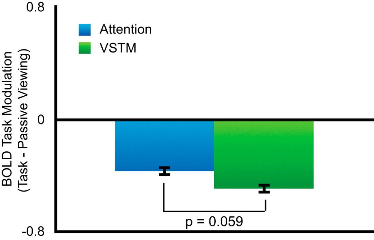 Visual Short-Term Memory Activity in Parietal Lobe Reflects