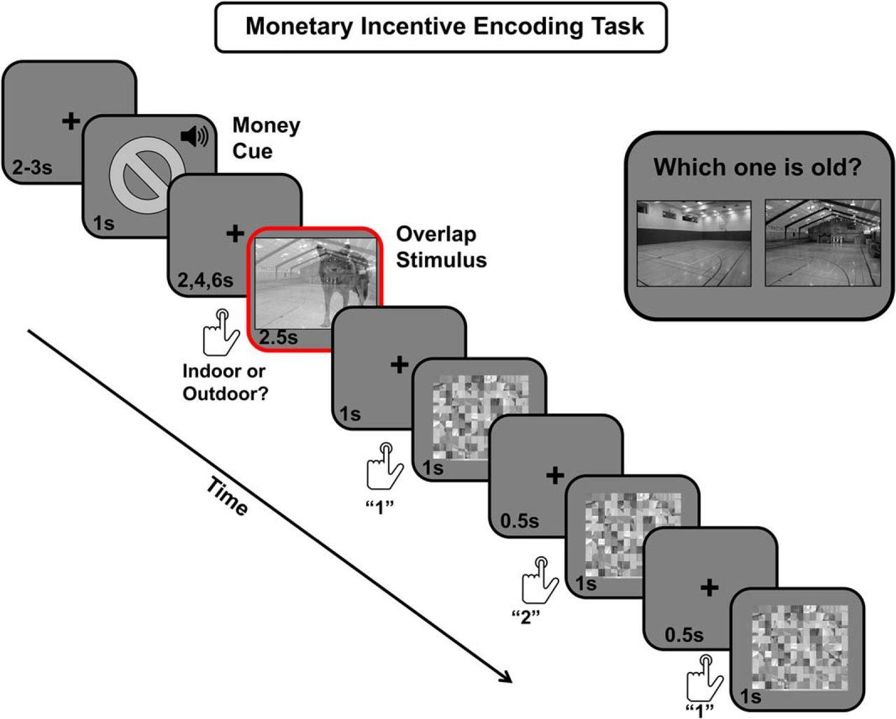 Locus Coeruleus Activity Strengthens Prioritized Memories Under Nikola Tesla Alternating Current Diagram The Ac Blinking Causes Download Figure