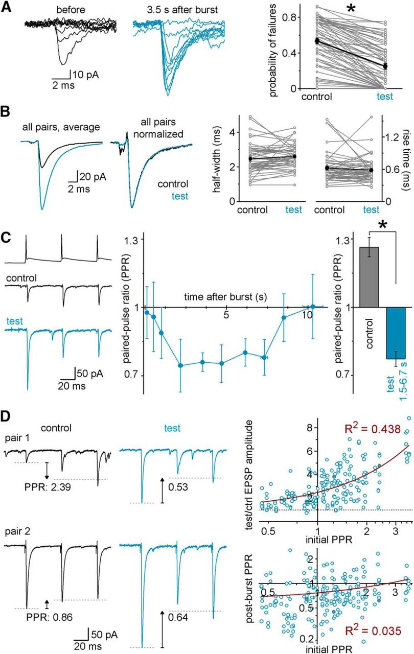 Single Bursts Of Individual Granule Cells Functionally Rearrange Wiring Diagram Rims Bcs Download Figure